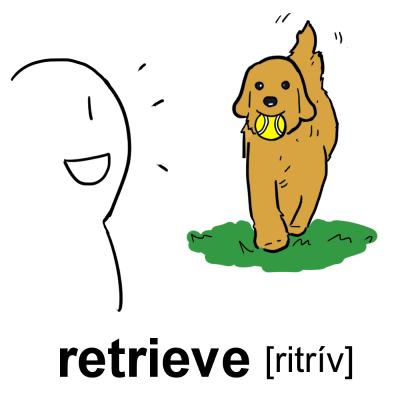 retrieve